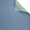 134 Pastel Green+Columbia Blue