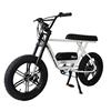 Eletric xe đạp 05