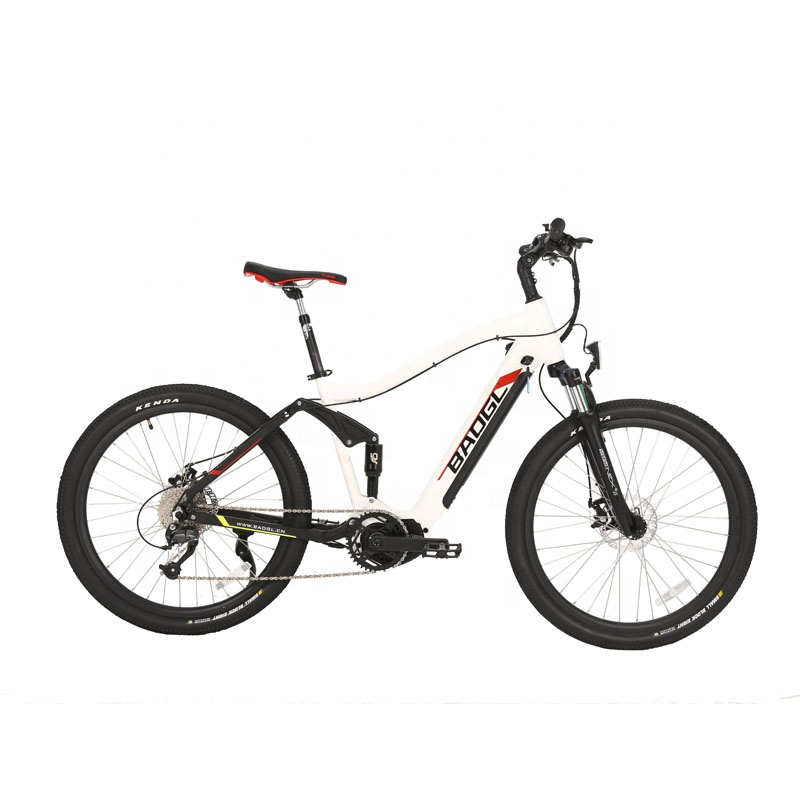 36V 48V 250W 350W 500W Mid Motor Mountain City E-Bike with Hidden Battery