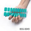 BSS-0049