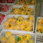 Pepper Sweet Chinese Fresh Capsicum/Fresh Bell Pepper/sweet Pepper Yellow /red/green 8613953636519