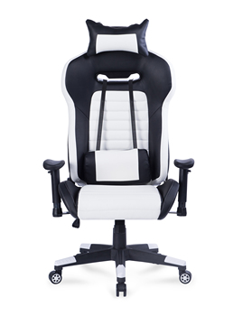 8219 Racing Ergonomic Home Office Desk Computer Gaming Chair