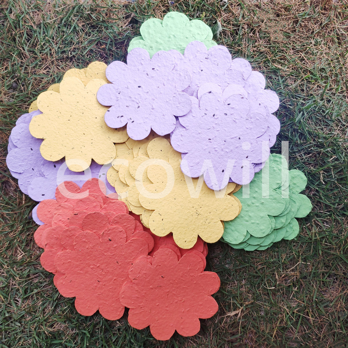 Plantable Seed Paper Shape Confetti  with Botantical Verb Veggie Flower Seeds