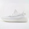 White Antarctica-limited