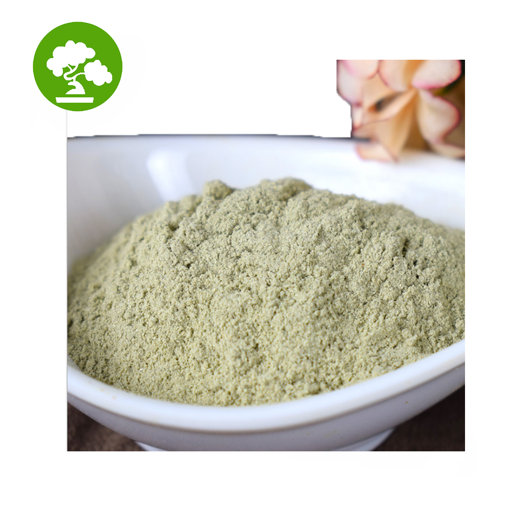 Hot Selling Andrographis Paniculata Powder /Andrographis Powder