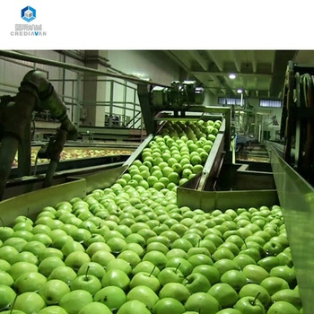 fruit/apple/pear/mango juice processing/production machine plant