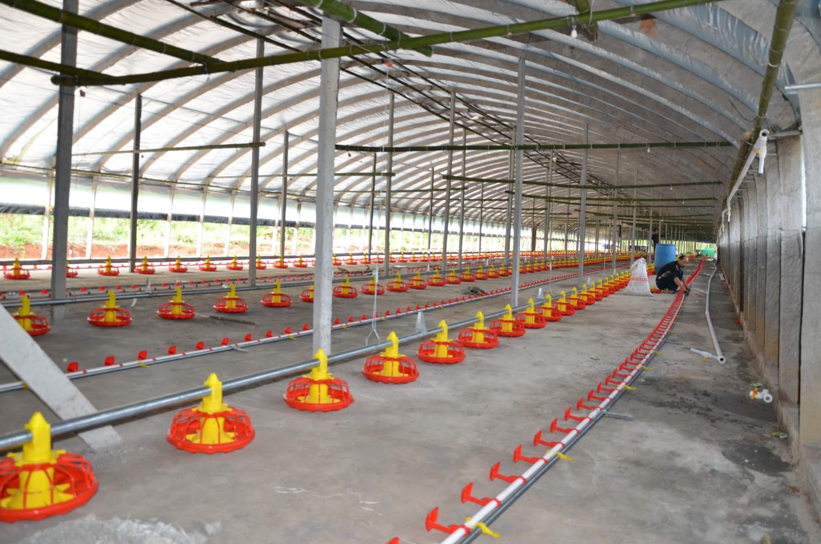 Cameroon automatic floor breeding poultry equipment 3 sets for 100 m *12 m *3 m per house