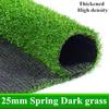 25ミリメートル春ダーク草