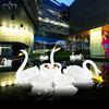 5 pcs swan