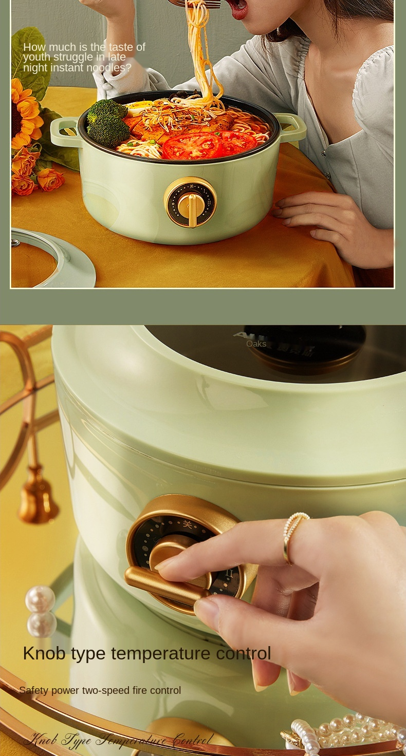 Household multifunctional electric hot pot 2.5 liters 3-5 people portable hot pot electric boiling pot
