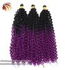 1b/purple