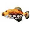 Electric board fish