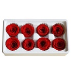 Cheaper Shipping Grade-B 4-5cm 8 pieces/box Preserved Roses for Decoration