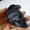 Eagle skulls (a)