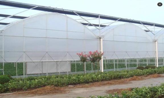 Пленка из поликарбоната, стеклянное покрытие, сельскохозяйственная палатка
