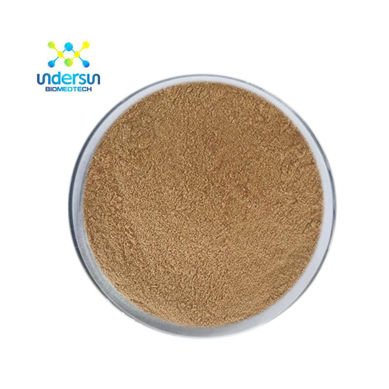 Hot Sale Natural organic Fucoidan Extract powder