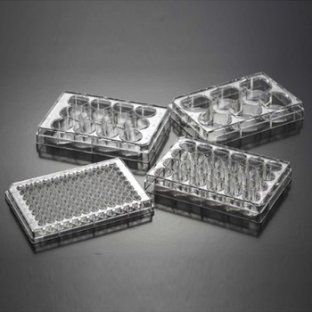 AELAB Adherent Treatment 6 Well 12 Well 24 Well 48 Well 96 Cell 384 Well Cell Culture Plates With Good Price