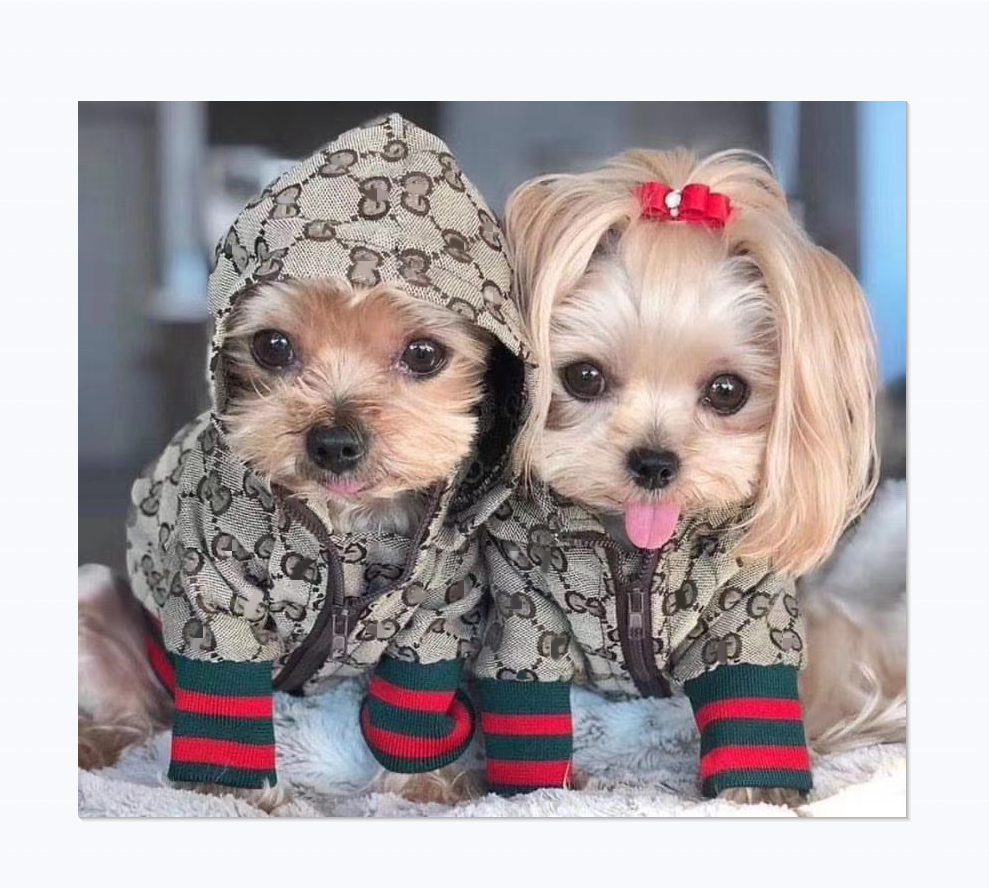 High-end luxury brand Fashionable dog jacket waterproof zipper dog clothes coat
