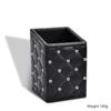 Holder-Black cubic