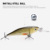 China manufacturers 11.6g 8cm 3D holographic eyes abs hard plastic realistic jerkbait fishing lure minow