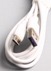 FAST TYPE C CABLE