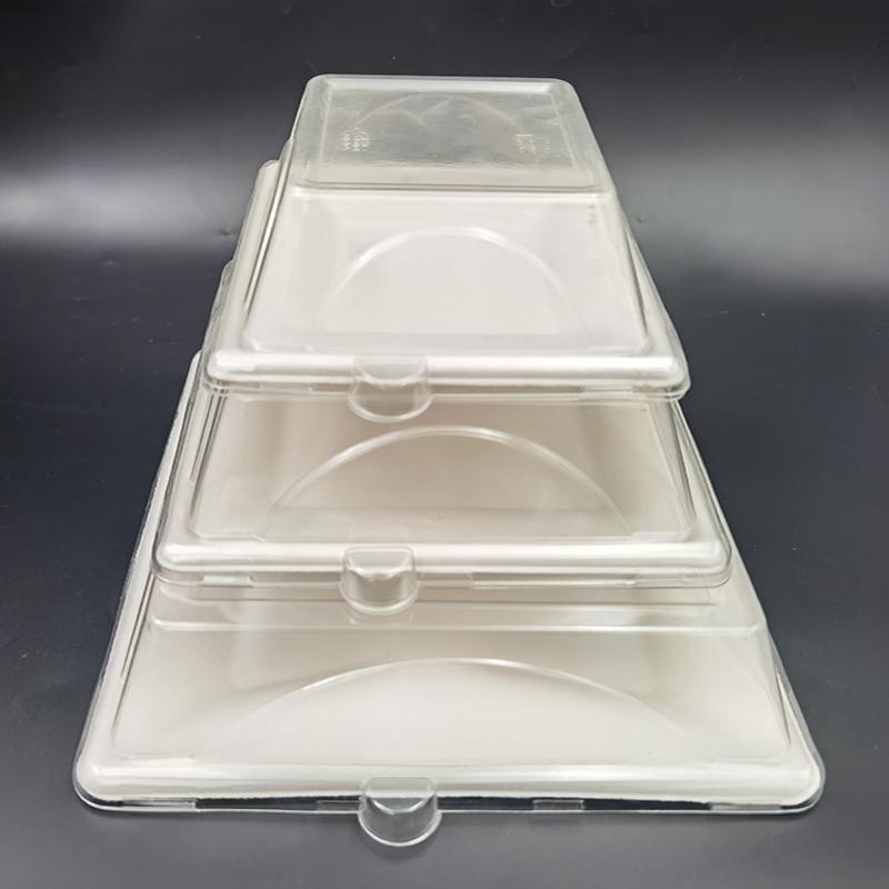 Прозрачный одноразовый пластиковый поднос для упаковки суши