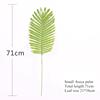 Small areca palm