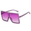 C16 Matte-Purple/G-Purple