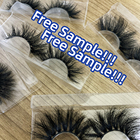Your Lashes5d Lashes3d Bulk Eyelashes Pestana Pestaas 20-25 Mm Mink Lasheswholesale Vendor Creating Your Own Lash Line Natural Lashes5d Lashes3d Wholesale Vendor 25mm