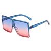 17060 KID C23 Blue Pink