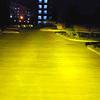 H8 H9 H11/3000K/Yellow