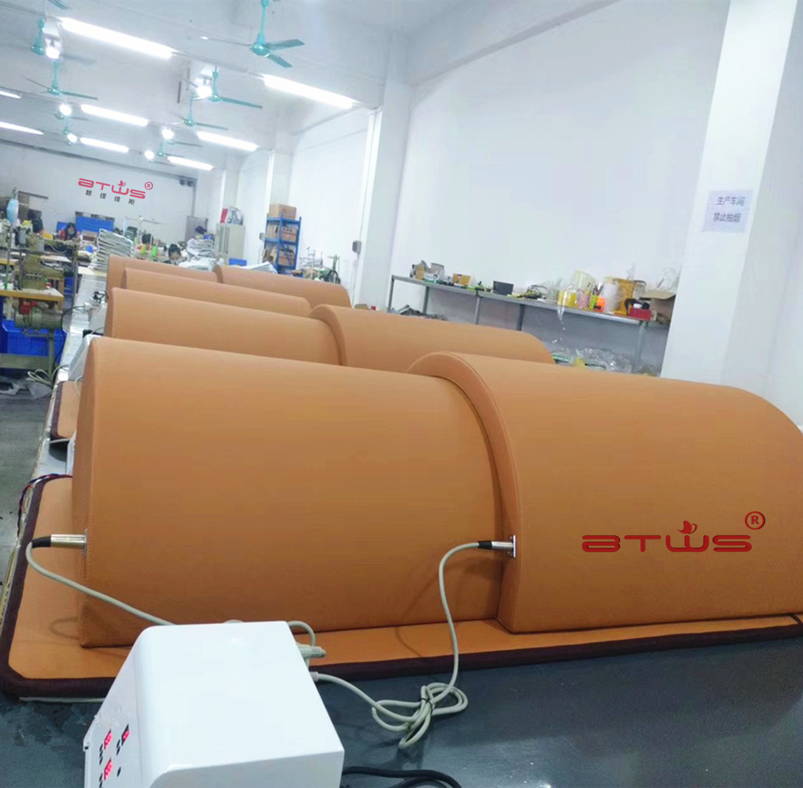 BTWS high quality FIR sauna dome fitness equipment for sale infrared spa capsule equipment