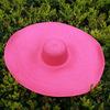 Pink-Brim-25cm