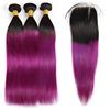 1b purple straight