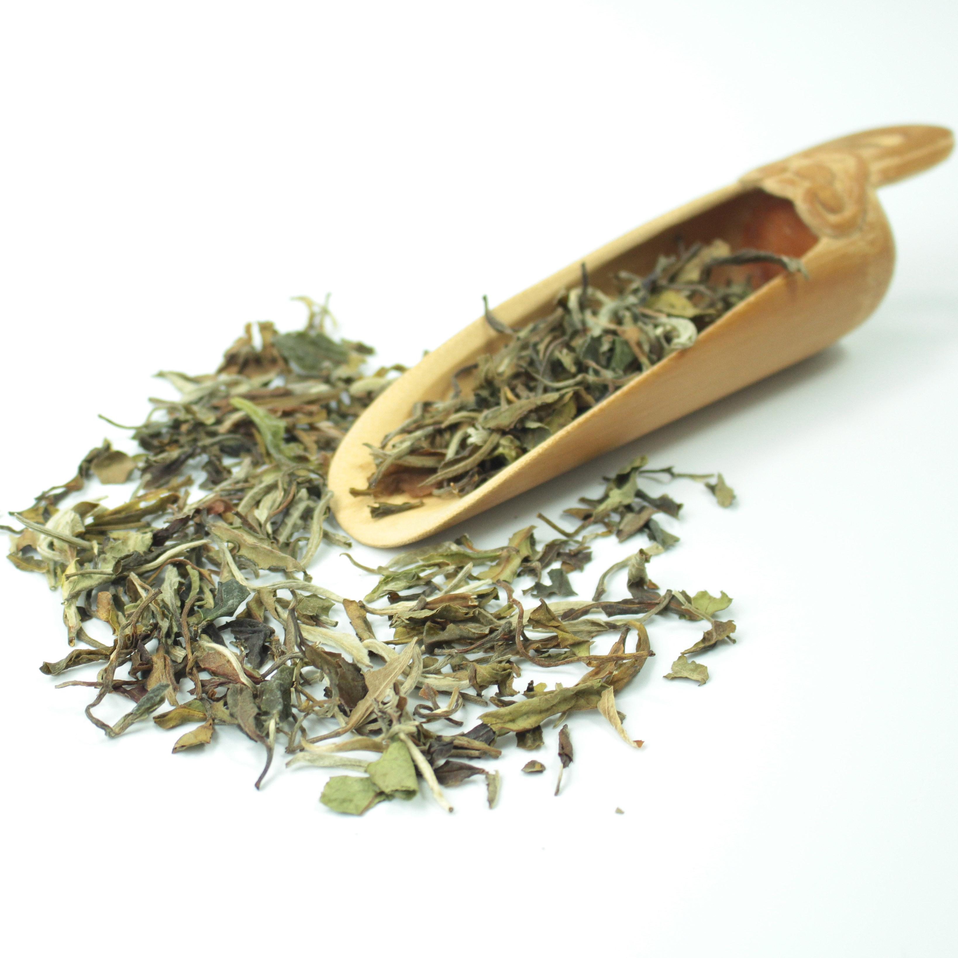 2021 Chinese white tea Organic loose leaf white peony Bai Mu Dan - 4uTea | 4uTea.com