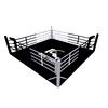 4m floor boxing ring