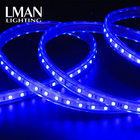 High Voltage 220v Color Changing 60 Led/m Rgb 5050 Smd Waterproof Led Strips