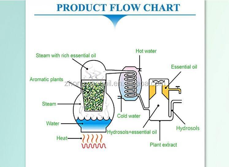 Ganoderma Lucidum (lingzhi) Extract Water Hydrolate hydrosol New