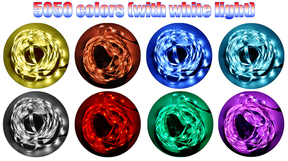 Shenzhen RGB Led Strip Light Waterproof 10M Led DC 12V Smd 5050 Flexible Led Light Strip