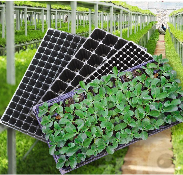 DDA329 21 32 50 72 105 128 Cells Plant Germination Nursery Tray Durable Square Garden Vegetables Flower Growing Seedling Trays