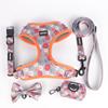 dog collar set