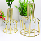 Container Flower Metal Wrought Iron Hydroponic Container Glass Test Tube Vase Creative Home Living Room Flower Stand Ornaments Golden Flower Arra