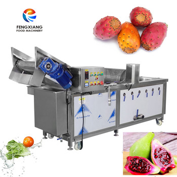 WA-1000 Prickly pear bubble washing machine Cactus Fruit cleaning machine