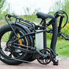 1 Electric Bicycle Manufacturers Direct Selling 1 Seat Fat Tire Electric Bicycle For Sale
