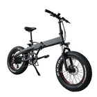 SPEEDPOWER new style 48V 500W electric bicycle 20inch foldable fat electric bike