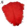 60-65cm red