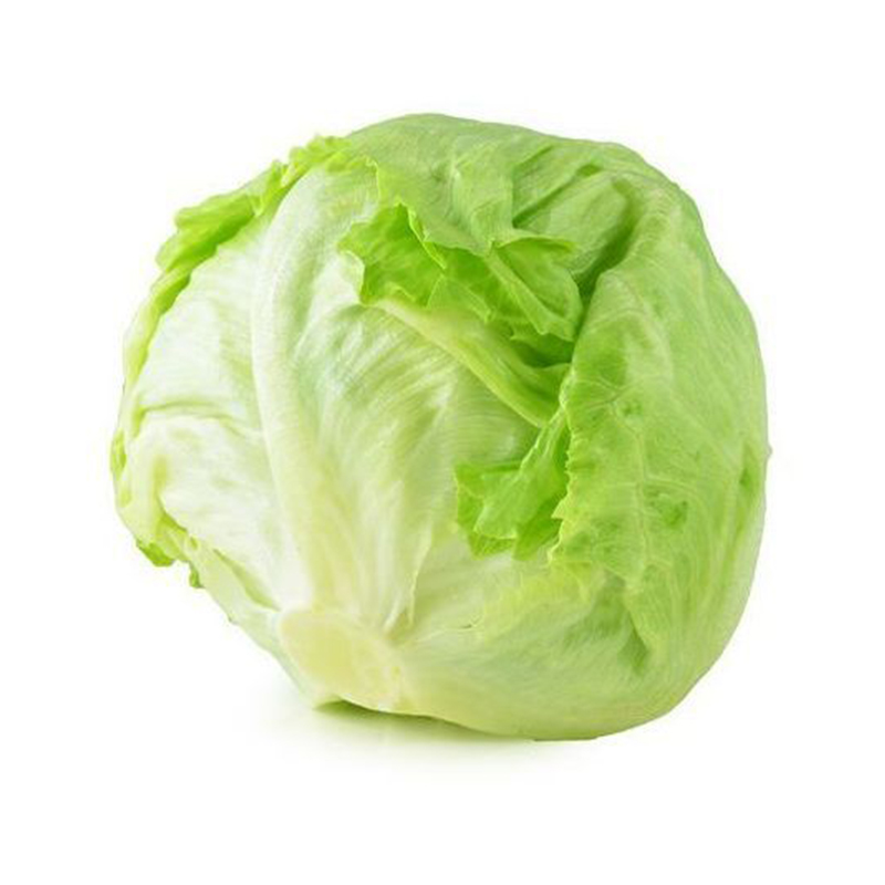 Lettuce Warnings For Christmas 2021 2021 Fresh Chinese Vegetable Seeds Iceberg Lettuce Seeds For Salad Buy Agricultural Greenhouse Vegetables Seeds For Plantings Fruit And Vegetable Product On Alibaba Com