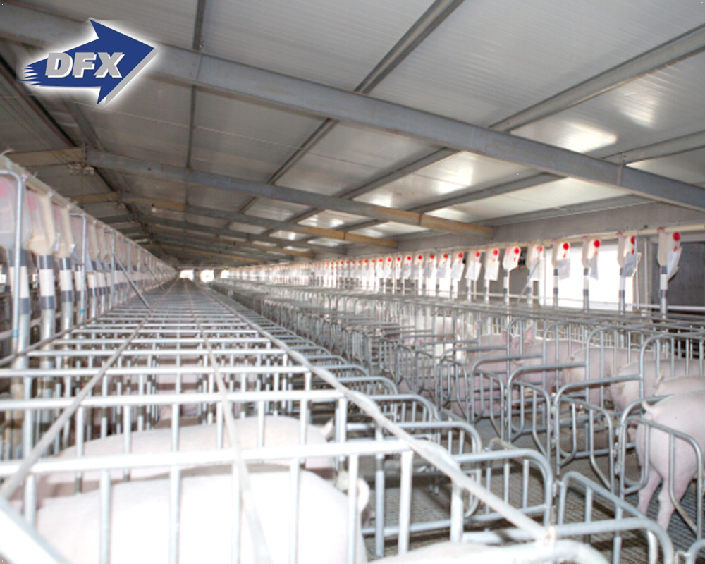 Steel structure prefabricated hall with free design