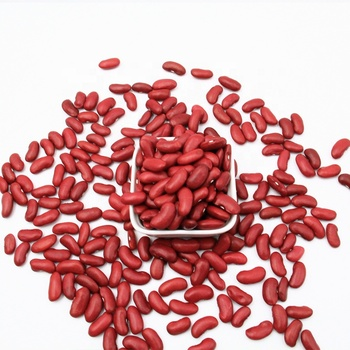 Wholesale Dried Dark Red Kidney Bean long shape Kidney Beans