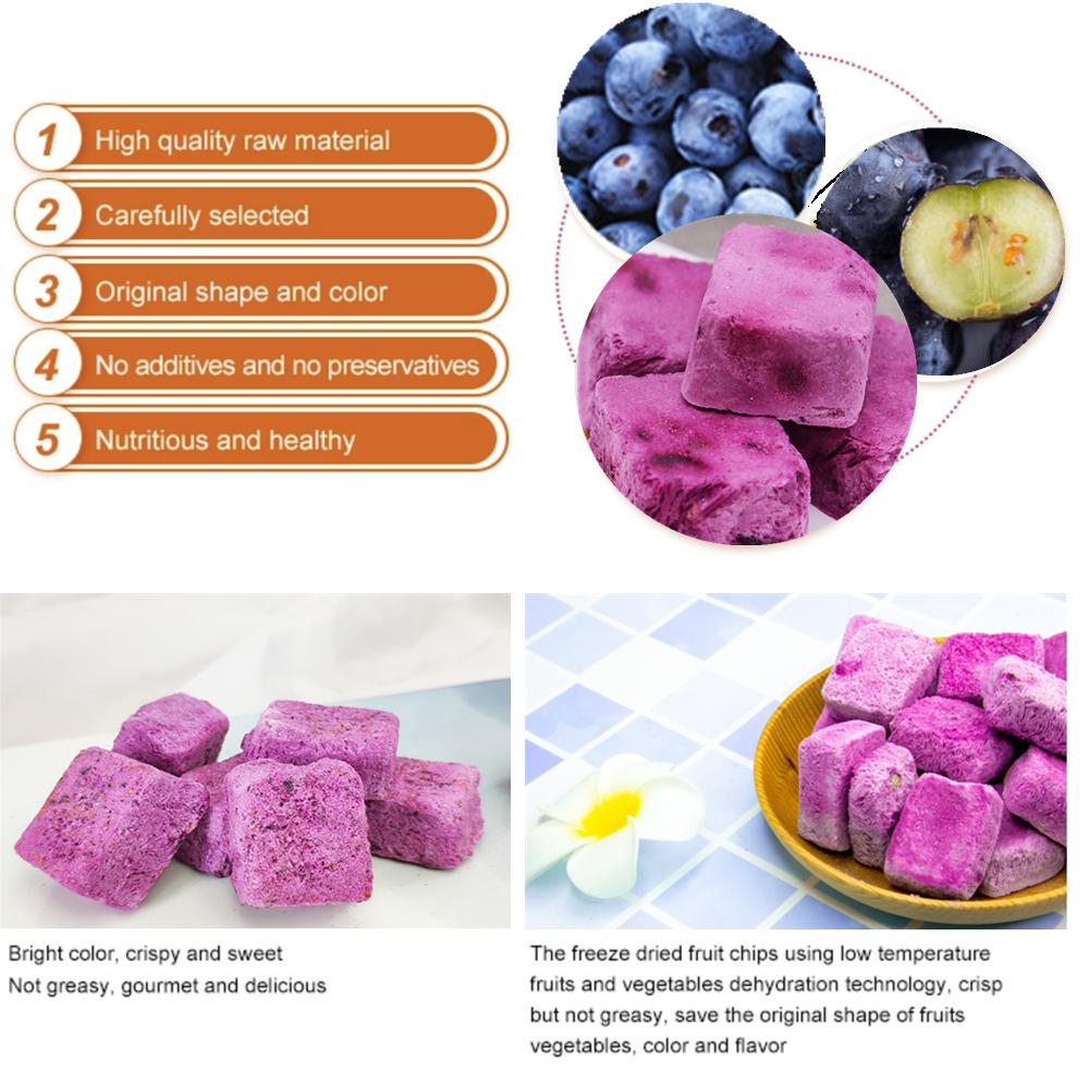 Natural freeze Dried Yogurt Blueberry premium grade fresh Frozen Yogurt Blueberry pieces Yoghourt with right prices